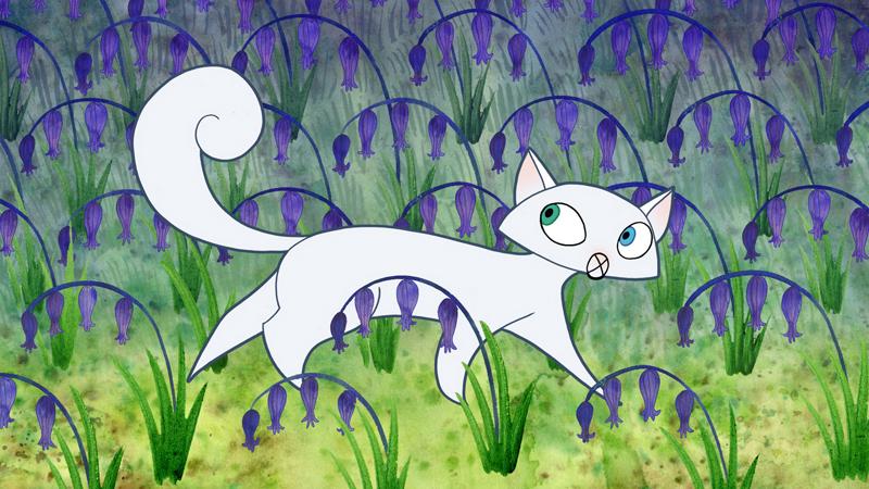 Odd Eyed Van Kitten Aww