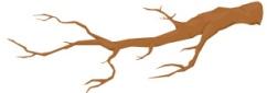 tree divider