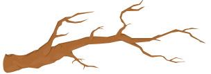tree branch divider