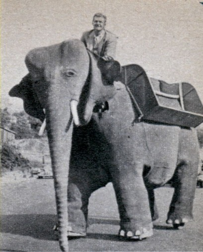 mechanical walking elephant
