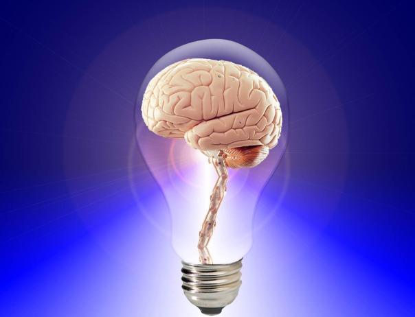 brain bulb idea