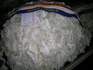 fleece, wool