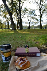 book reading in the park mabinogion