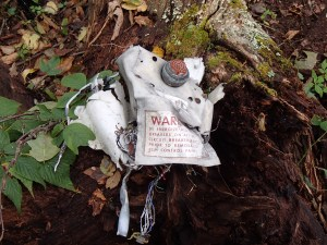 Part of the ECM pod, left as a marker.