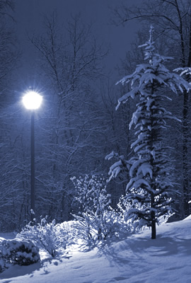 winter lamp post narnia