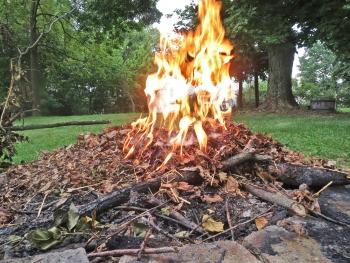 leafburning3